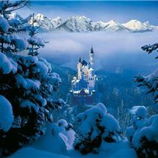 Munich (D) + Bavarian Castles (2days),,